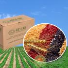 Organic Assorted Grain Package