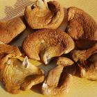 Organic Round Mushrooms (150g)