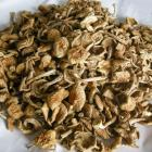 Organic Huazi Mushrooms (150g)