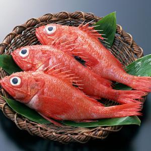 冰岛红鱼(100-300克/条,500克每包)